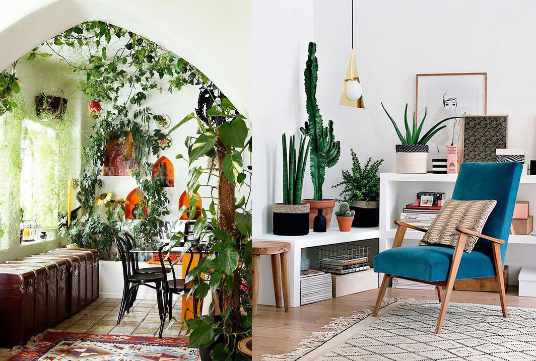 Utiliza elementos naturales al interior de tu hogar